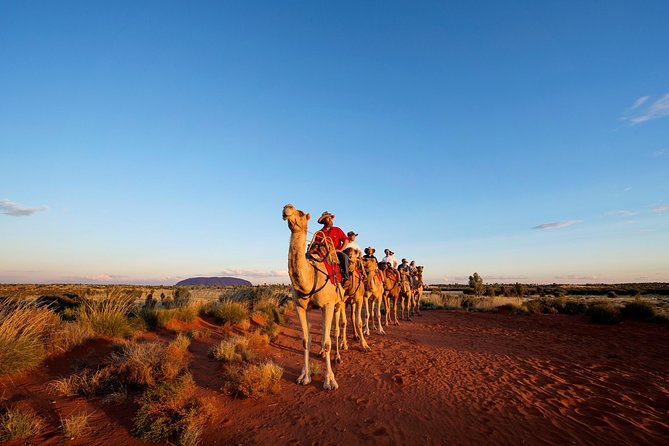 Uluru Camel Express Sunrise or Sunset Tours - Attractions Brisbane