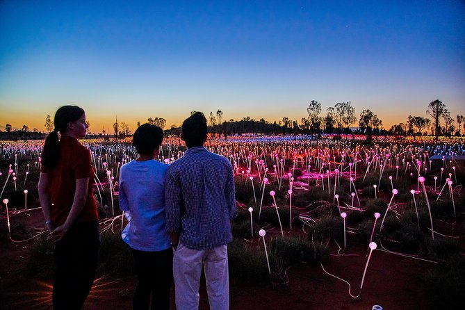 Uluru Field of Light Sunrise Tour - Attractions Brisbane