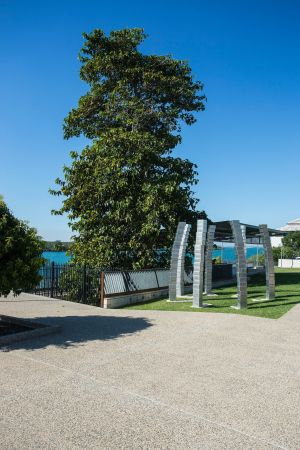 A Cup of Culture in Mackay - Attractions Brisbane