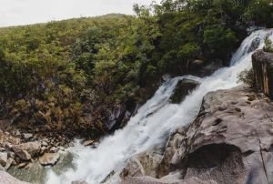 Davies Creek National Park and Dinden National Park - Attractions Brisbane