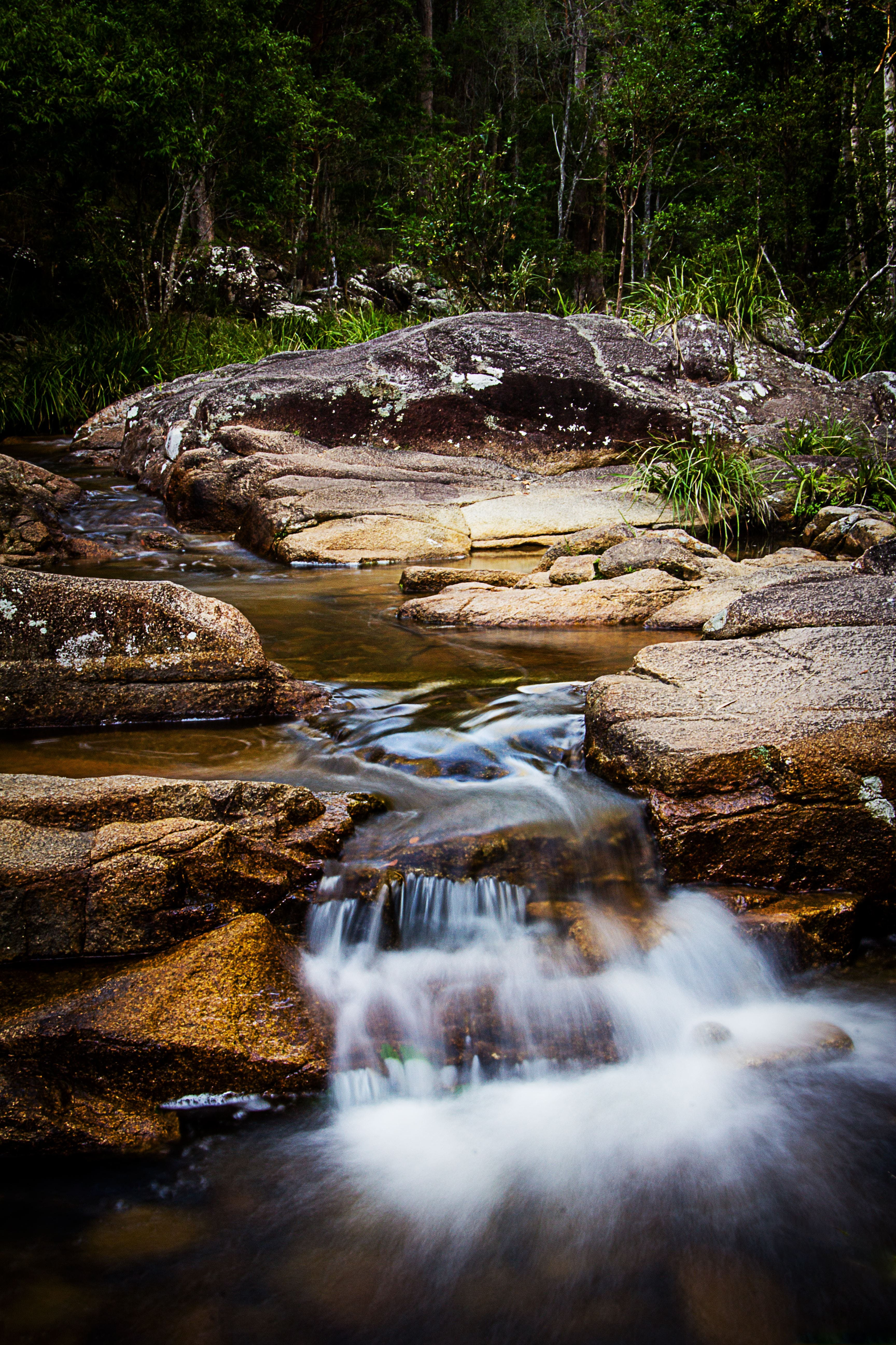 Mothar Mountain Rockpools - Attractions Brisbane