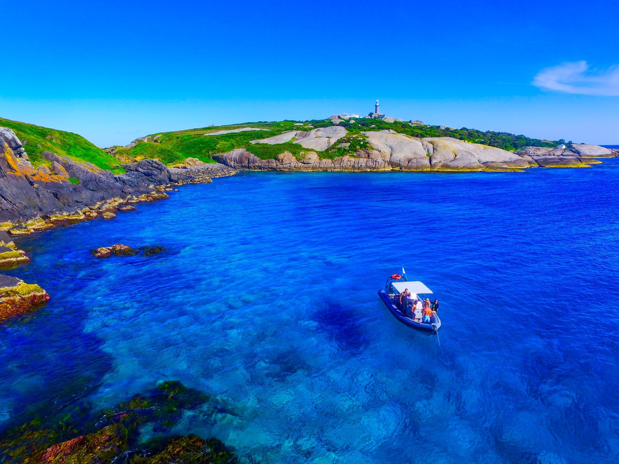 Snorkelling Montague Island - Attractions Brisbane