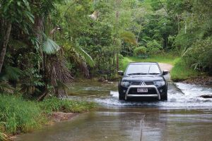 The Pioneer Valley and Eungella National Park - Attractions Brisbane