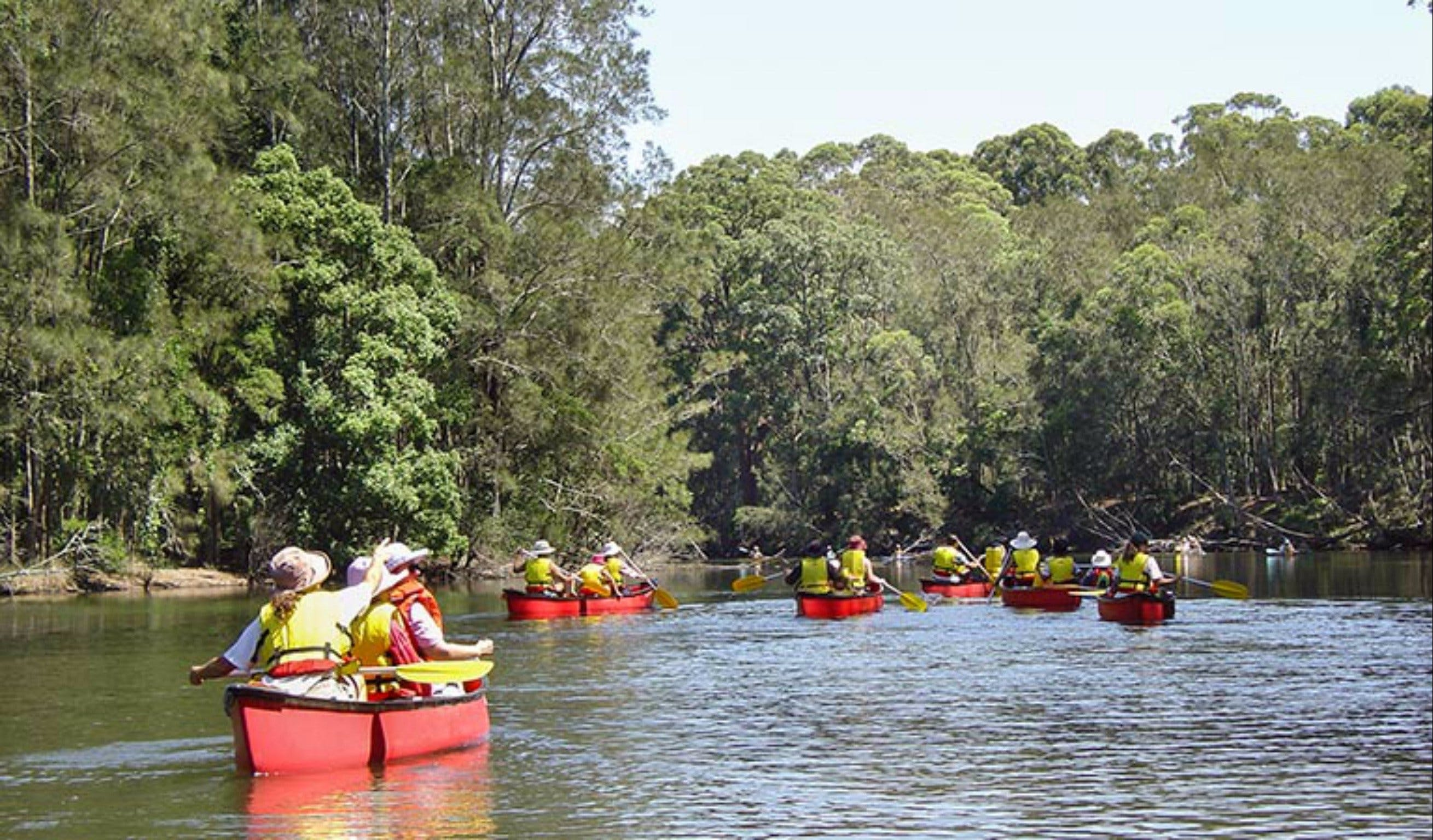Bonville Creek - Attractions Brisbane