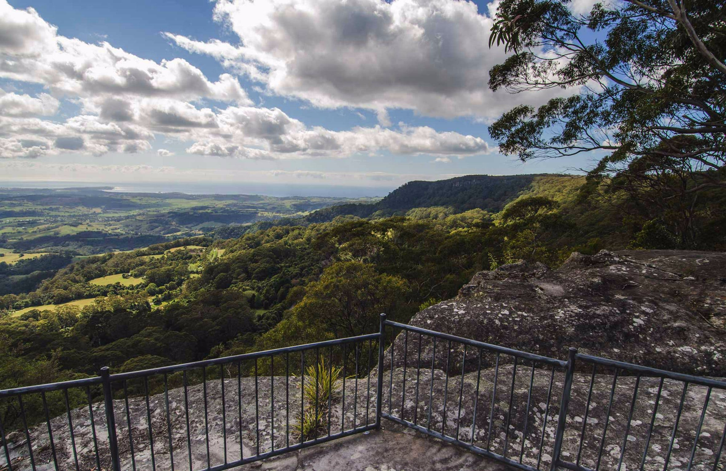 Illawarra Lookout Walking Track - Attractions Brisbane