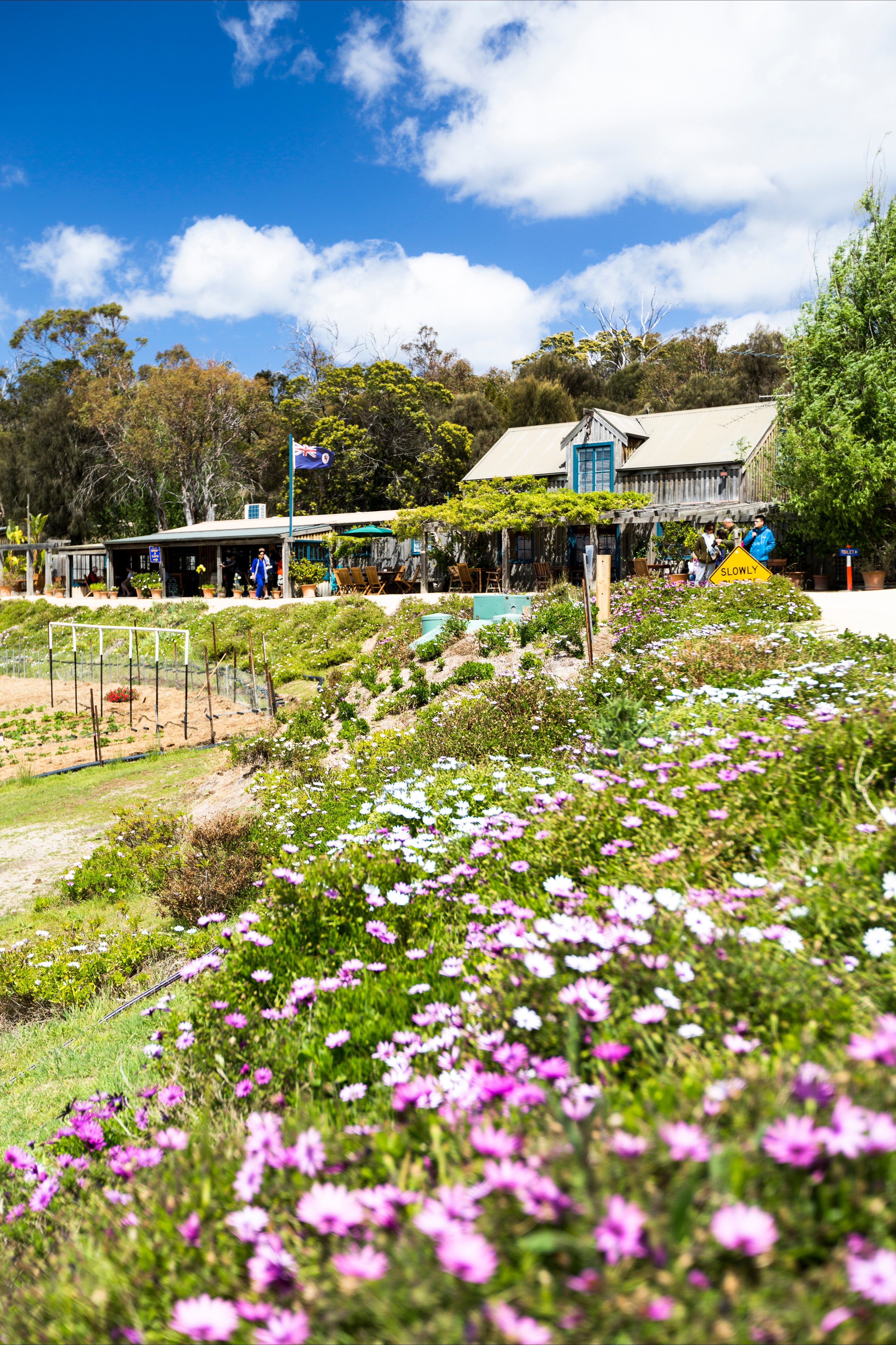 Kate's Berry Farm - Attractions Brisbane