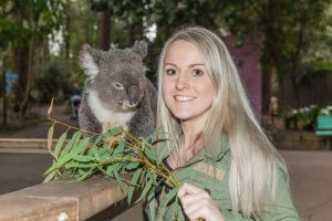 Koala Park Sanctuary - Attractions Brisbane