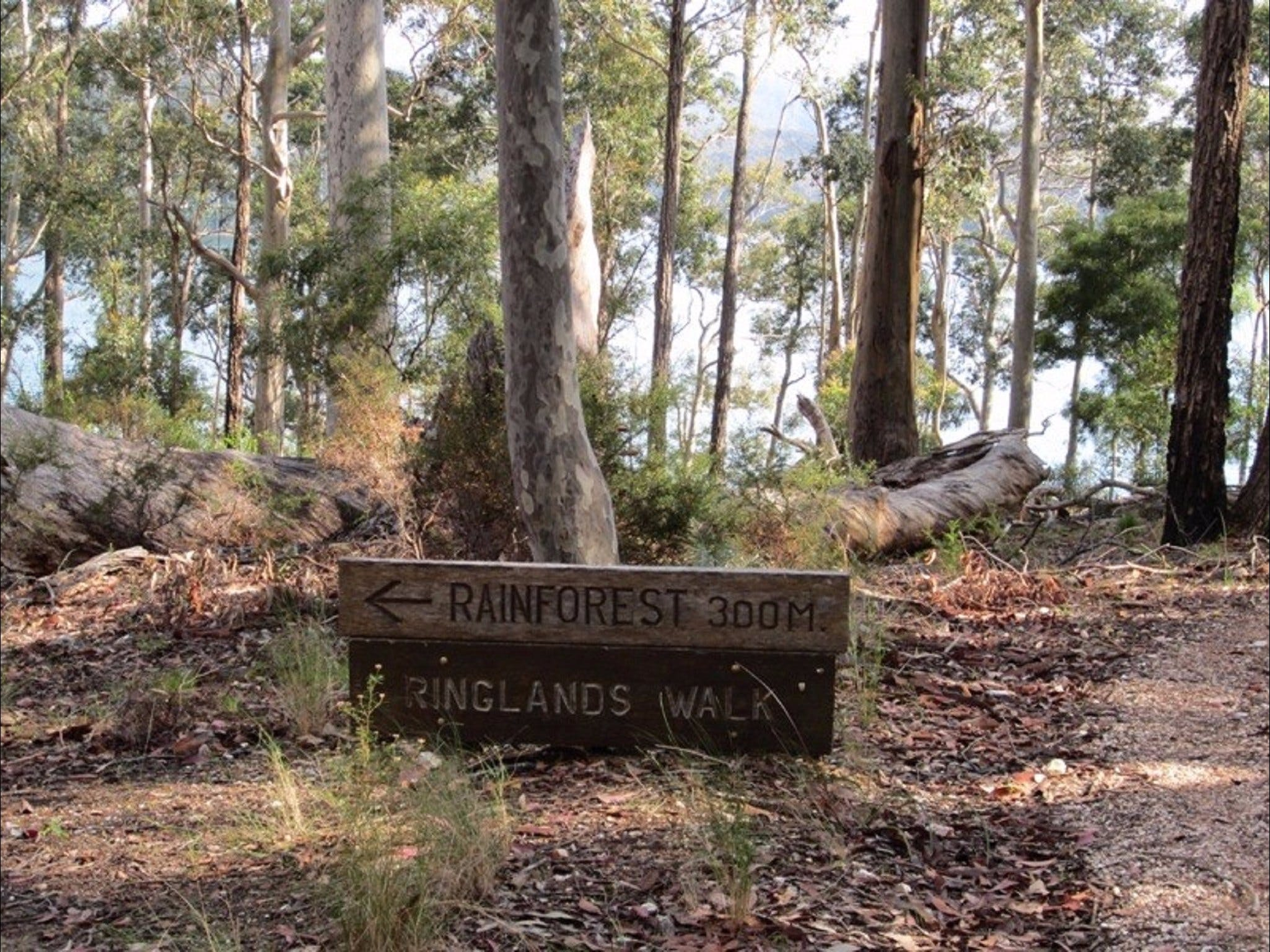 Ringlands Rotary Walk Narooma - Attractions Brisbane