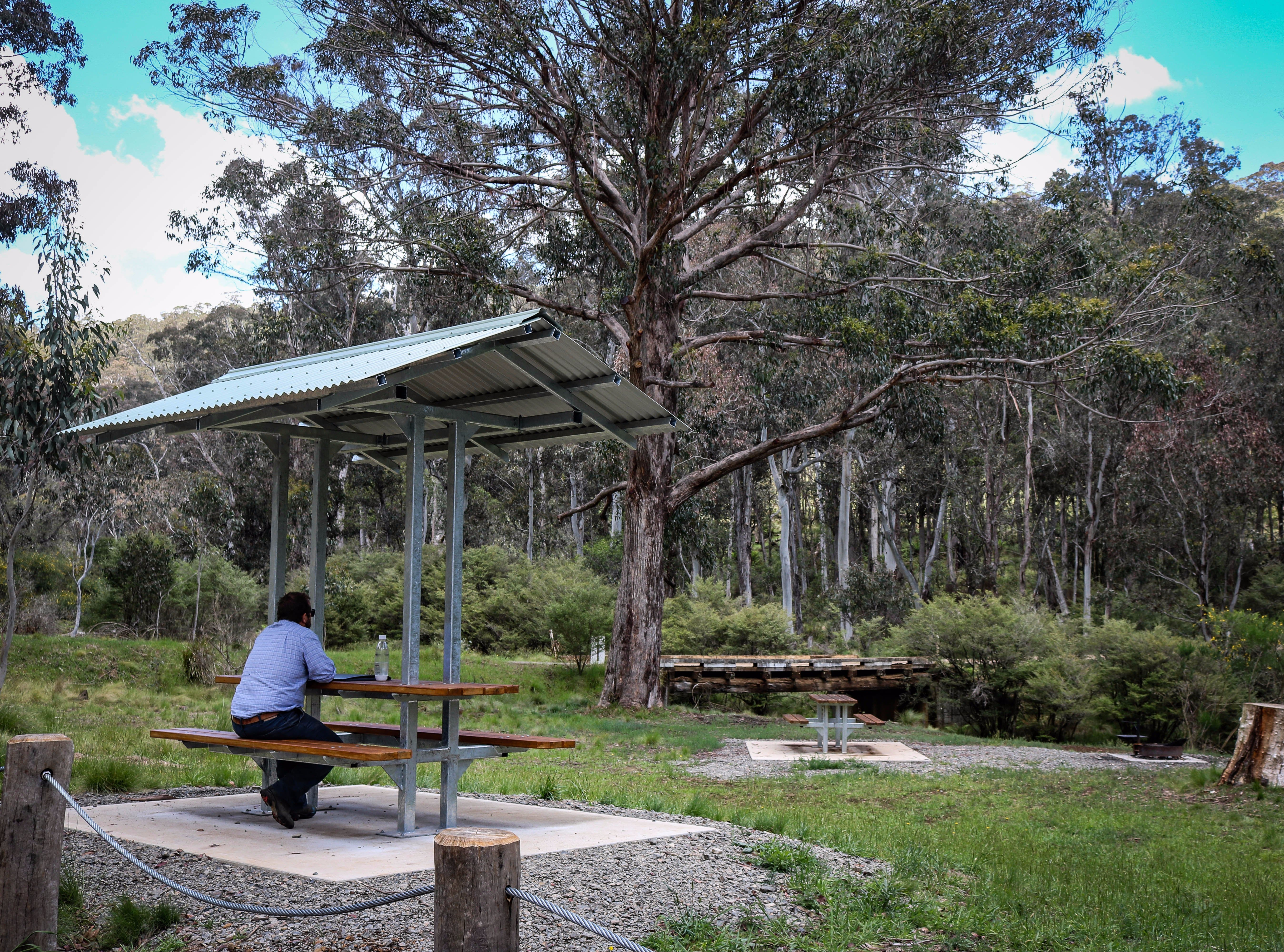 Barrington Tops State Forest - Attractions Brisbane