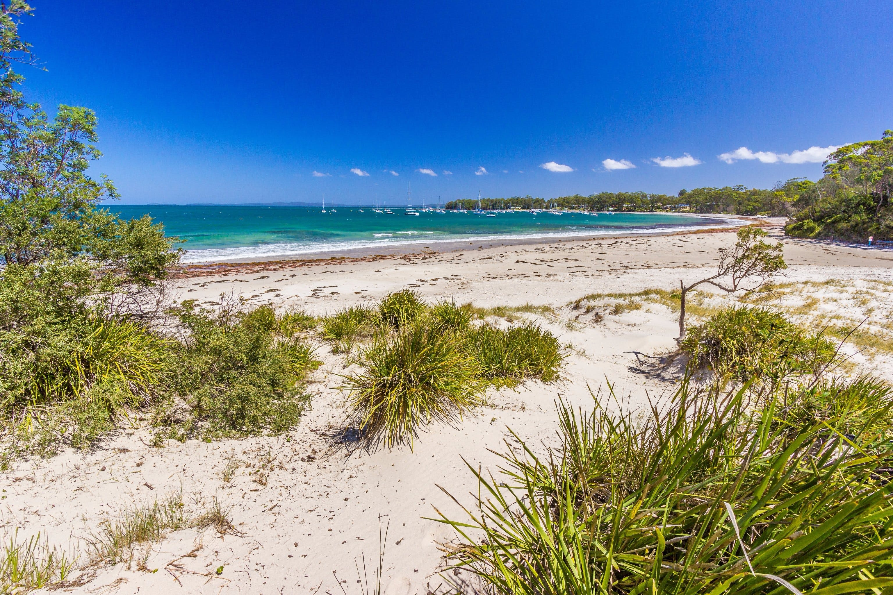 Callala Bay - Attractions Brisbane