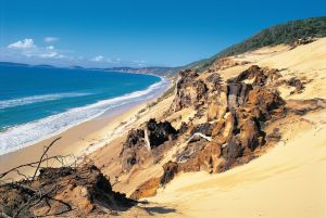 Cooloola Great Sandy National Park - Attractions Brisbane