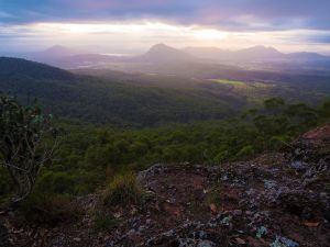 Cunninghams Gap and Spicers Gap Main Range National Park - Attractions Brisbane