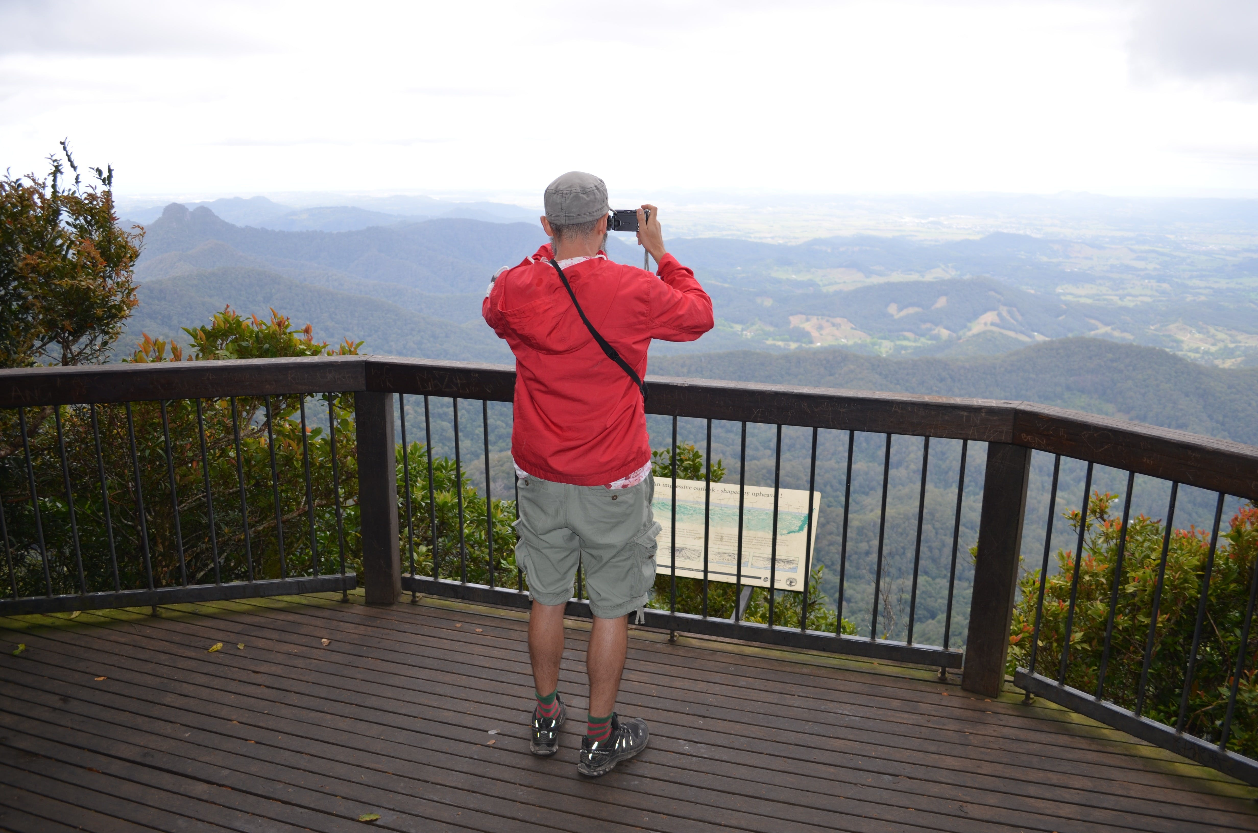 Best of All lookout track Springbrook National Park - Attractions Brisbane