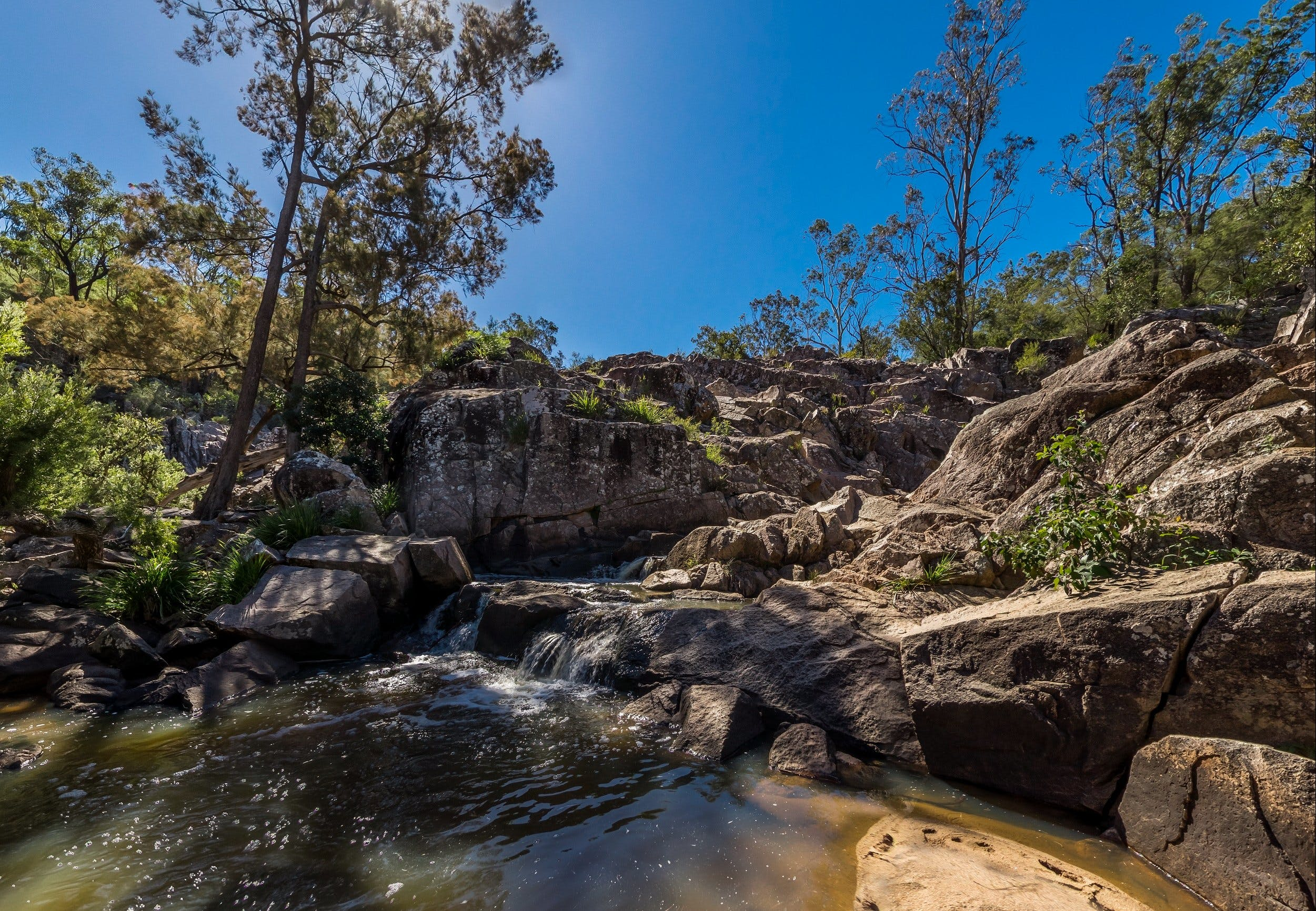Crows Nest Falls - Attractions Brisbane