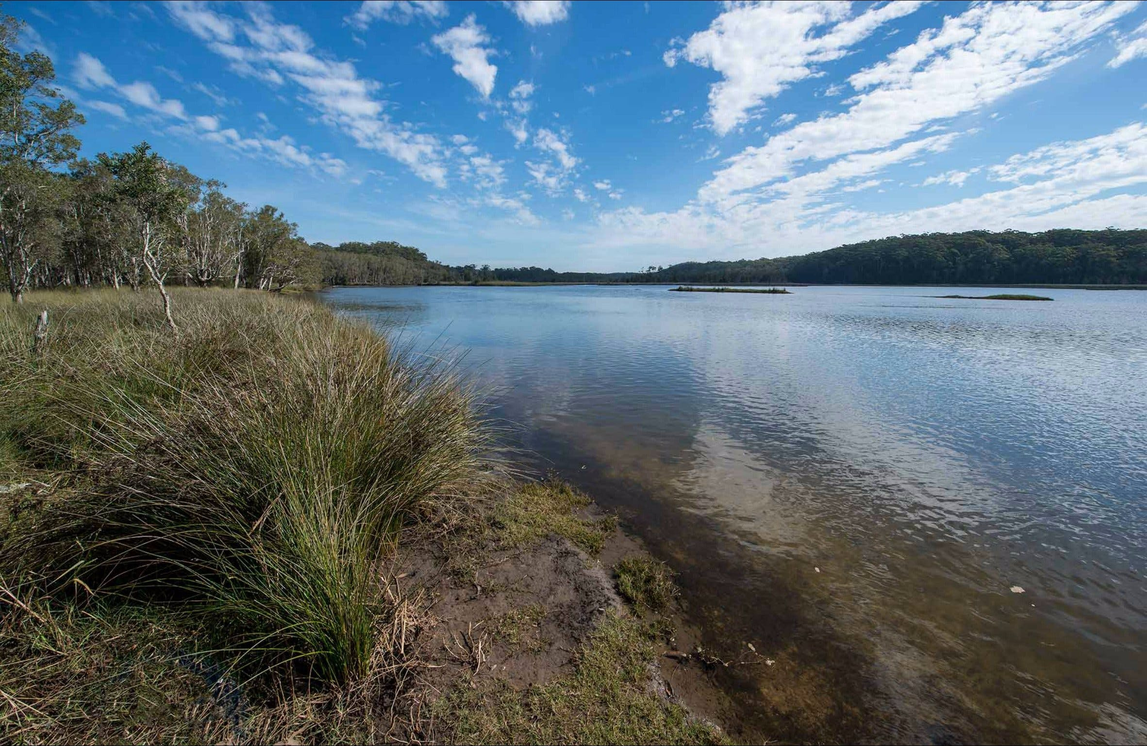 Lake Innes Nature Reserve - Attractions Brisbane