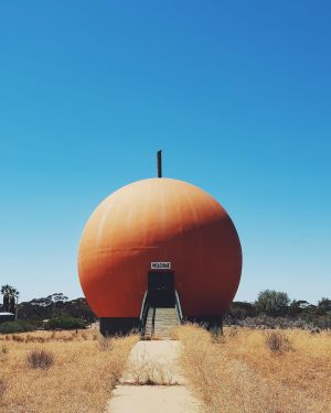 The Big Orange - Attractions Brisbane