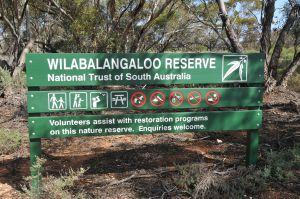 Wilabalangaloo Reserve - Attractions Brisbane
