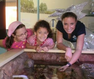 Central Coast Marine Discovery Centre - Attractions Brisbane