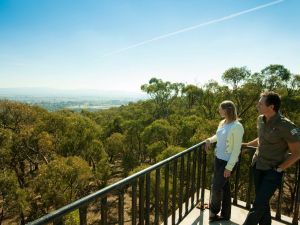 Monument Hill Reserve - Attractions Brisbane