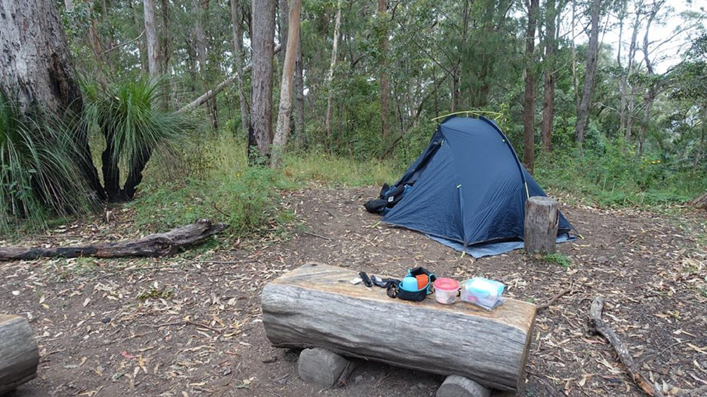 Northbrook Mountain Bush Camp - Attractions Brisbane