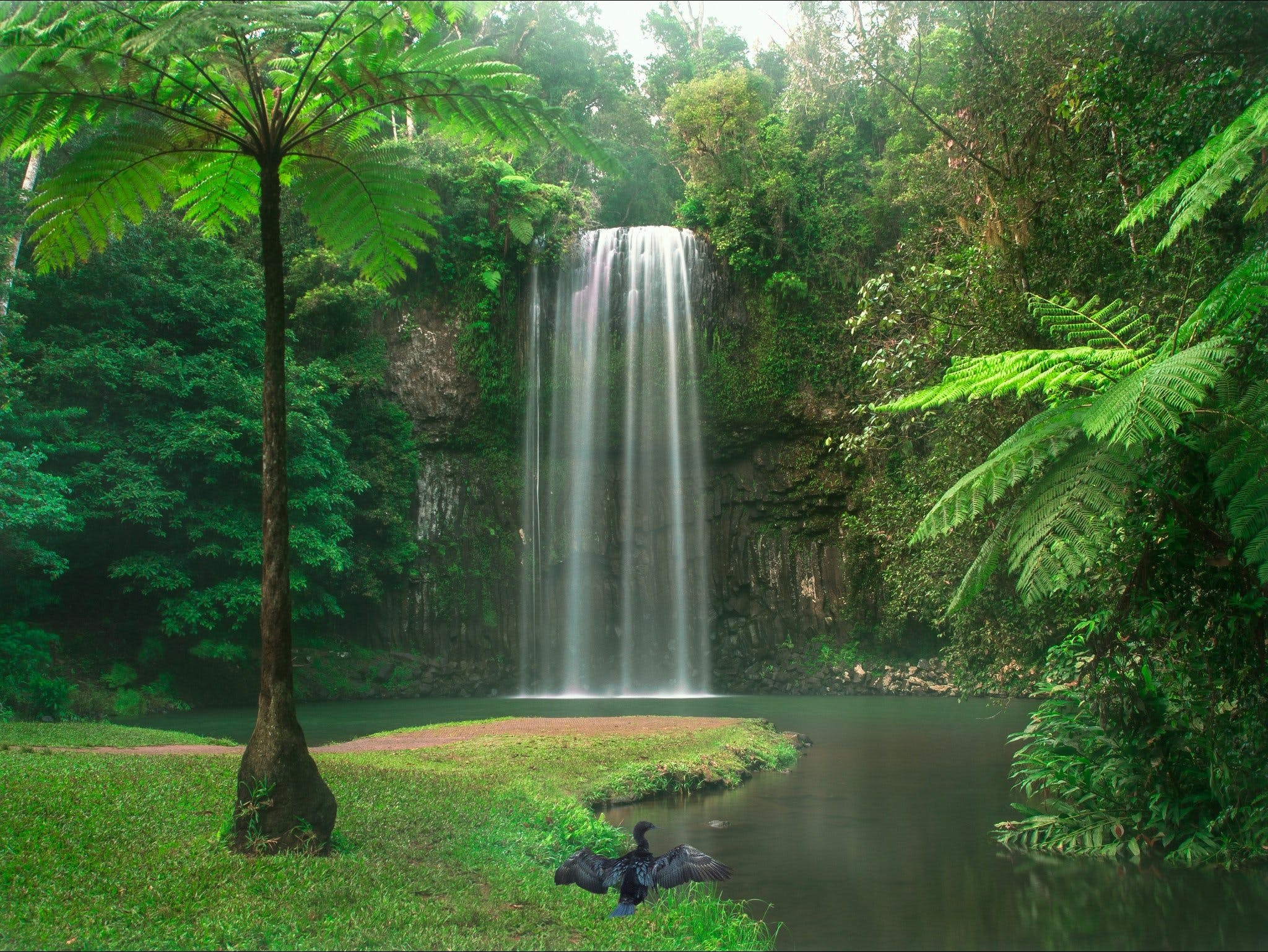 Atherton Tablelands - Attractions Brisbane
