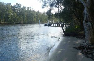 Engels Reach picnic area - Attractions Brisbane