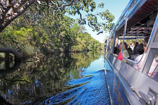 Serenity Cruise to Australia's Everglades - Attractions Brisbane