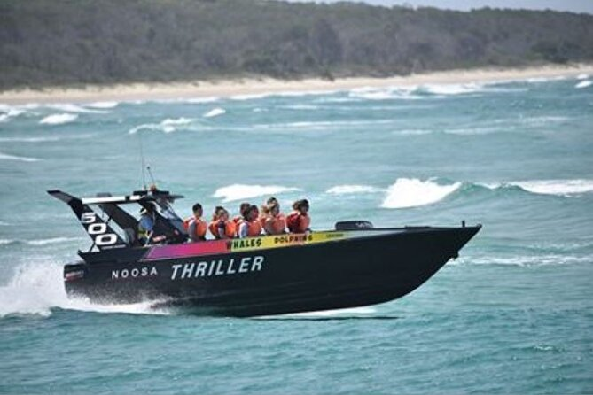 Noosa Thriller - 500hp Ocean Adventure Ride - Attractions Brisbane