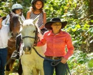 Blazing Saddles Adventures - Attractions Brisbane