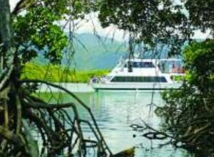 Cairns Harbour Cruises - Attractions Brisbane