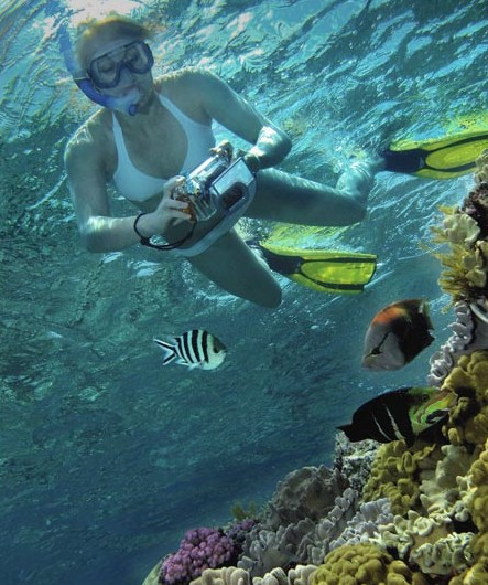 Calypso Reef Charters - Attractions Brisbane
