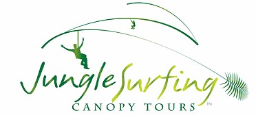 Jungle Surfing Canopy Tours and Jungle Adventures Nightwalks - Attractions Brisbane